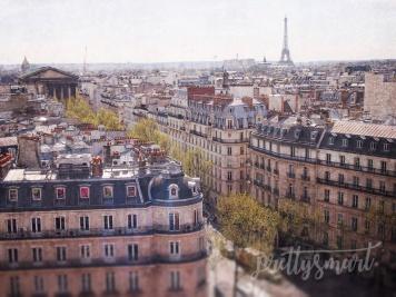 2015-ParisFood--12rooftop